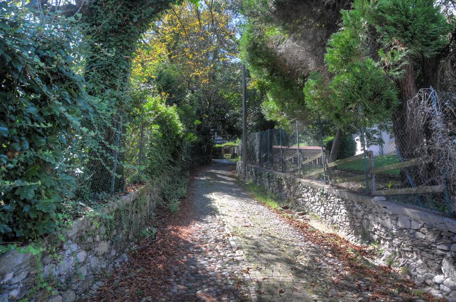 Carciano_Borgo15