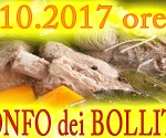 bollito_bansito